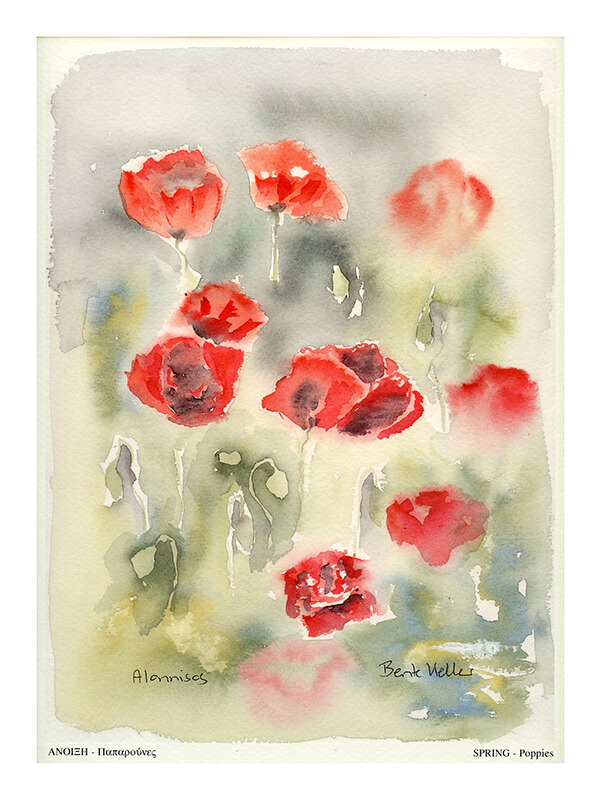 Spring – poppies