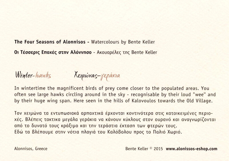Sets of 4-seasons birds, Alonnisos